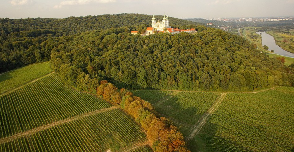 Winnica Srebrna Góra Kraków