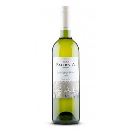 Sauvignon Blanc Reserva Vina Falernia