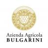 Bulgarini Rosso Bruno Vino Rosso - Zdjęcie 3